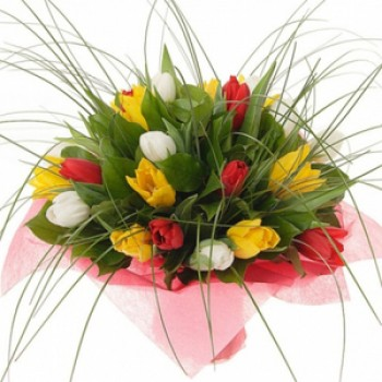 Mixed tulip bouquet (25 tulips)