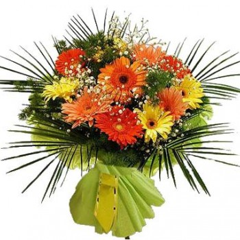 Colored bouquet of gerberas
