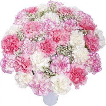 Soft pink bouquet of carnations