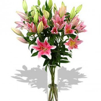 Pink lilies. Choose number of flowers!